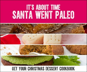 Give the gift of a guilt free christmas fit life geek feeling helpless around the dessert table christmas dessert freedom cookbook is a 35 page full colour pdf digitalebook with paleo vegan gluten free forumfinder Images